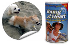 Animal Naturals K9 Young At Heart - Longevity & Anti Aging
