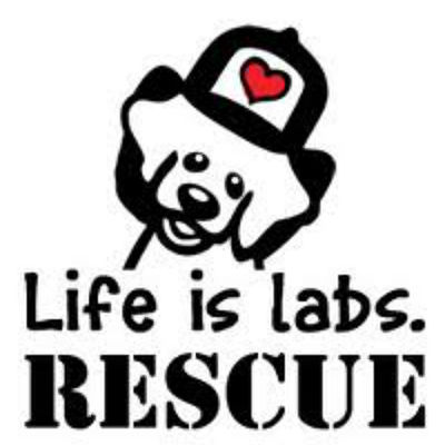 Life is Labs