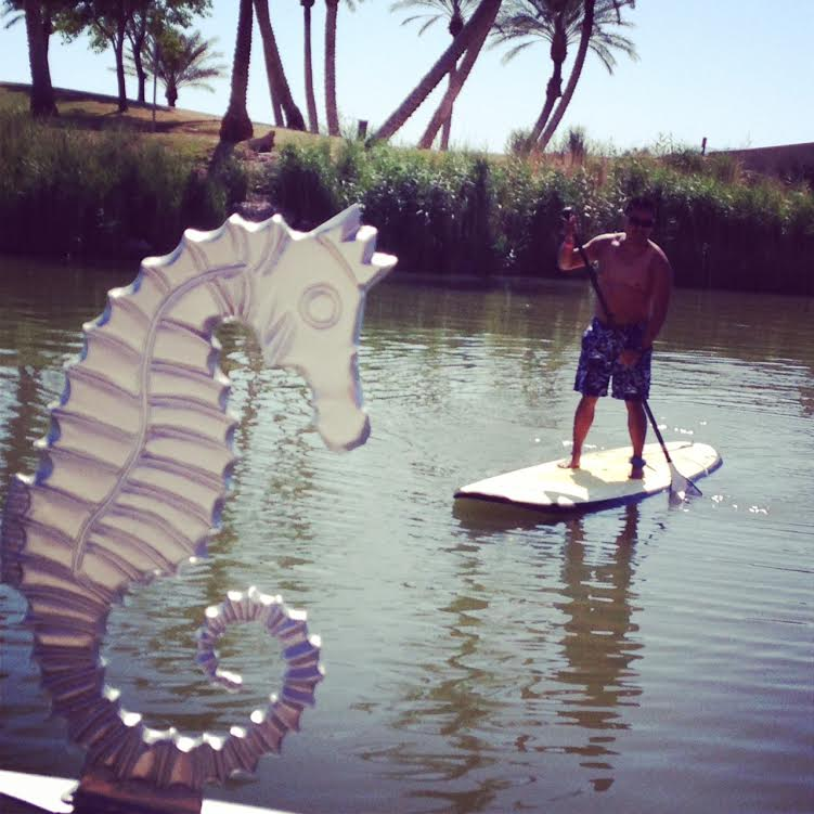 Michael Paddle Boarding at BlogPaws