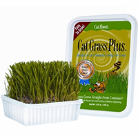 Miracle Care Cat A'bout Cat Grass Plus Tub