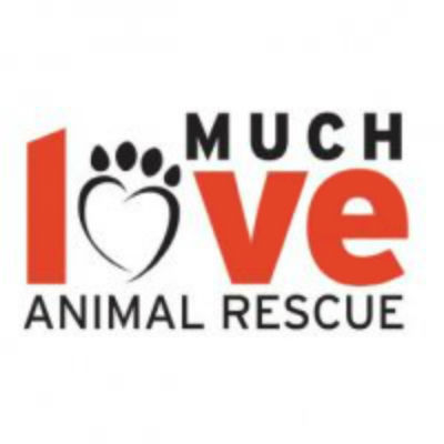 Much Love Animal Rescue