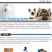 link to  21 Essential Products For Potty Training Your Dog