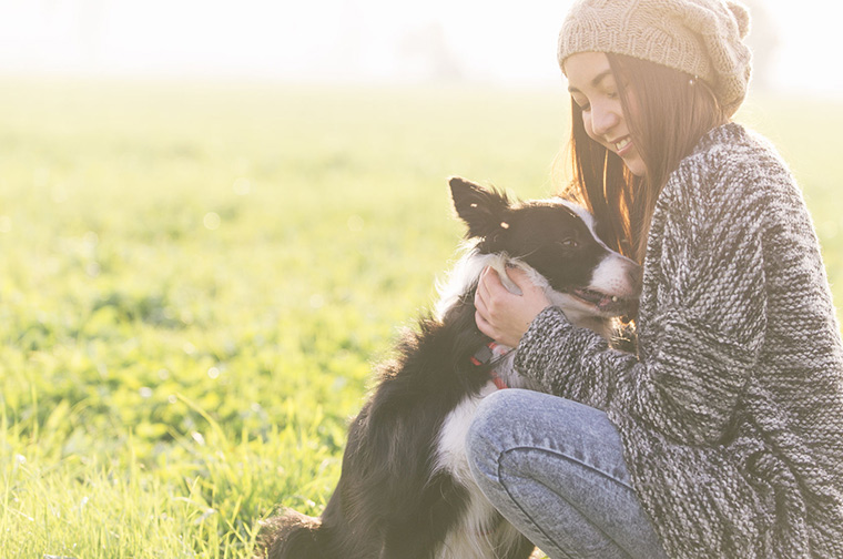 10 Wonderfully Organic Pet Items