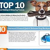 link to  Top 10 Best Walking & Hiking Dog Products