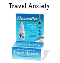 travelanxiety