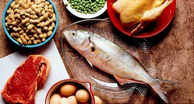 gout and protein