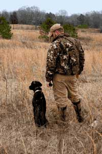 dog training collars or shock collars in the field