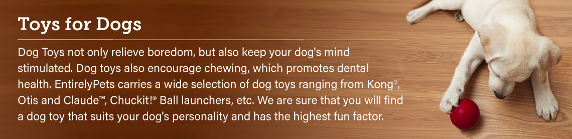 Toys for Dogs: Dog Toys not only relieve boredom, but also keep your dog's mind stimulated. Dog toys also encourage chewing, which promotes dental health. EntirelyPets carries a wide selection of dog toys ranging from Kong, Otis and Claude, Chuckit Ball launchers, etc. We are sure that you will find a dog toy that suits your dog's personality and has the highest fun factor.