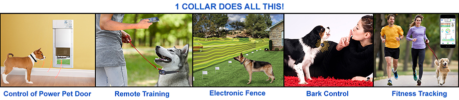 High Tech Pet Products - bark control collars, automatic dog doors, and invisible fence containment