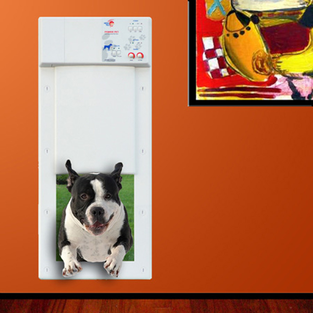 The Result Was A Relatively Inexpensive, Technically Advanced Automatic Pet  Door, Built To Last A Lifetime.