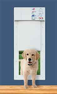 electronic-pet-door-remote