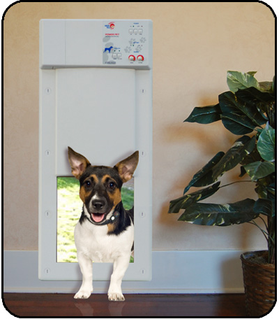 Px 1 Power Pet Door Worlds Most Popular Fully Automatic Motor