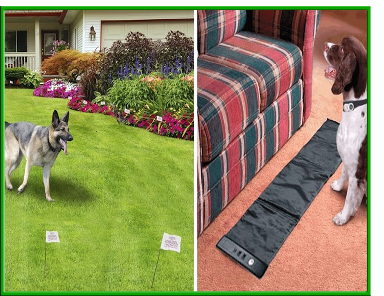 Humane contain invisible dog fence plus radio mat pet trainer the best electronic dog fencing combined with our unique indoor paw activated scram mat at one low price solutioingenieria Image collections