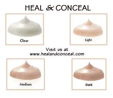HEAL & CONCEAL - Acne Healing & Drying Blemish Treatment and Concealer