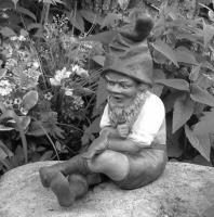 Published article featuring Kimmel Gnomes