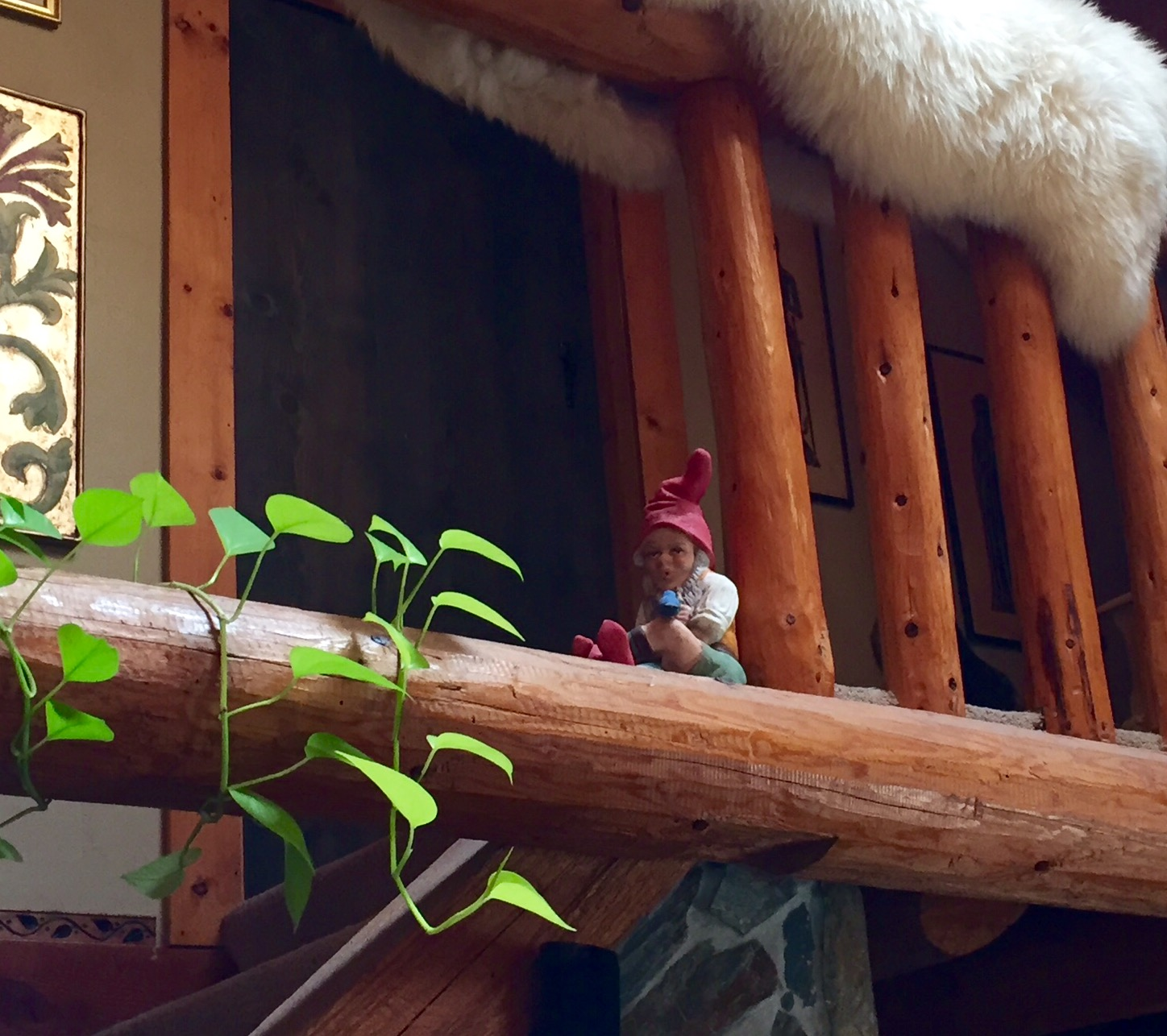 Real Gnomes: Gnome Photo Gallery