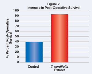 Figure 2. Increase in Post-Operative Survival