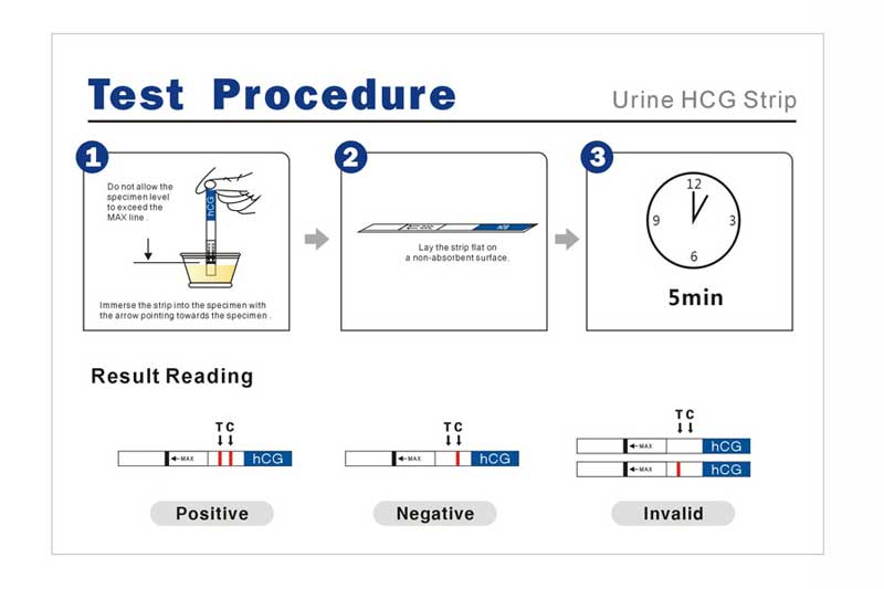 Pregnancy Urine Test for the Early Pregnancy detection