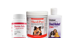 Anti-Shedding Solutions for Dogs and Cats