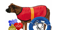 Apparel and Accessories for Dogs and Cats