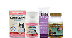 Cat Joint & Arthritis Supplements