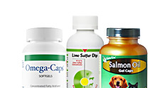 Cat Skin & Coat Supplements