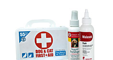 First Aid and Remedies