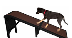 Pet Assistance, Stairs & Ramps