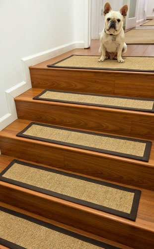 Stair Treads For Dogs | Natural Area Rugs
