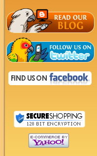 Secure Shopping