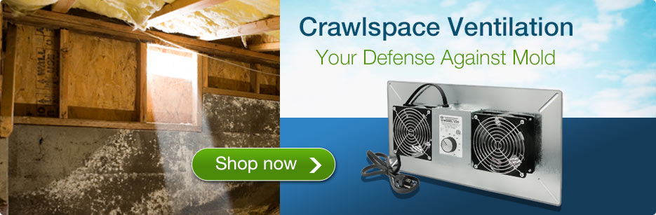 Crawl Space Ventilation - Your Defense Against Mold