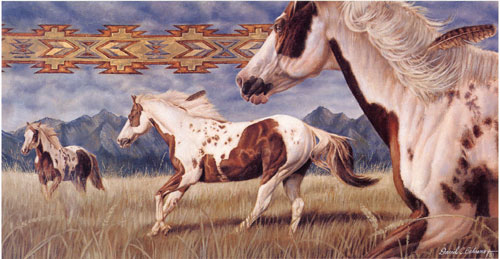 Native American Limited Edition Print