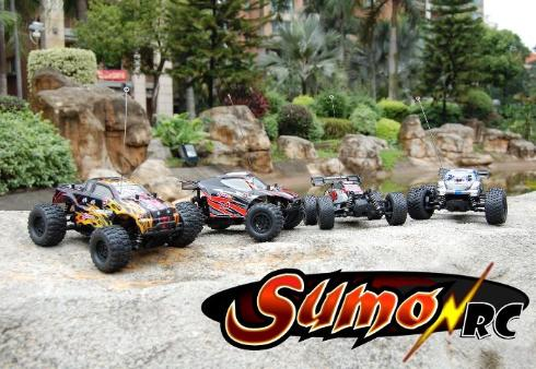 Sumo RC 1/24th RC Cars, Trucks, and Truggies