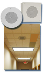 Ceiling and Wall Speakers