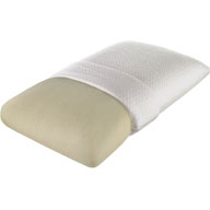 Beautyrest TruEnergy Plush Memory Foam Pillow