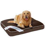Beautyrest Comforpedic Deluxe Large Orthopedic Napper Pet Bed