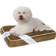 Beautyrest Comforpedic Deluxe Small Orthopedic Napper Pet Bed