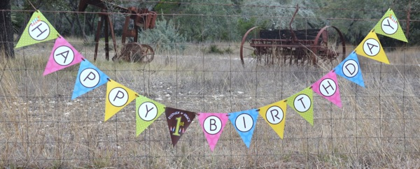 made to match br personalized happy birthday pennant banner