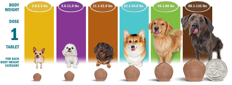 simparica trio table of tablet sizes with dog size