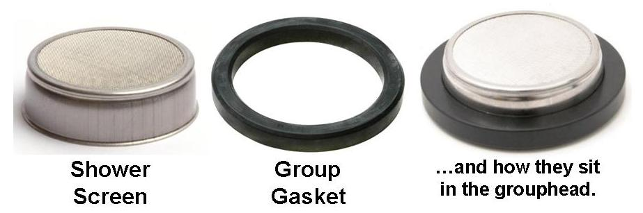The Group Gasket and the Shower Screen