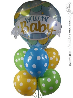 Welcome Baby Boy Hot Air Balloons CBB347 $29.99