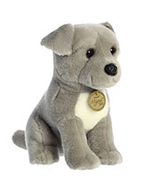 Pit Bull Puppy $16.99