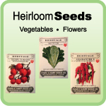 Buy Heirloom Seeds