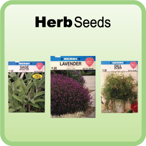 Buy Herb Seeds