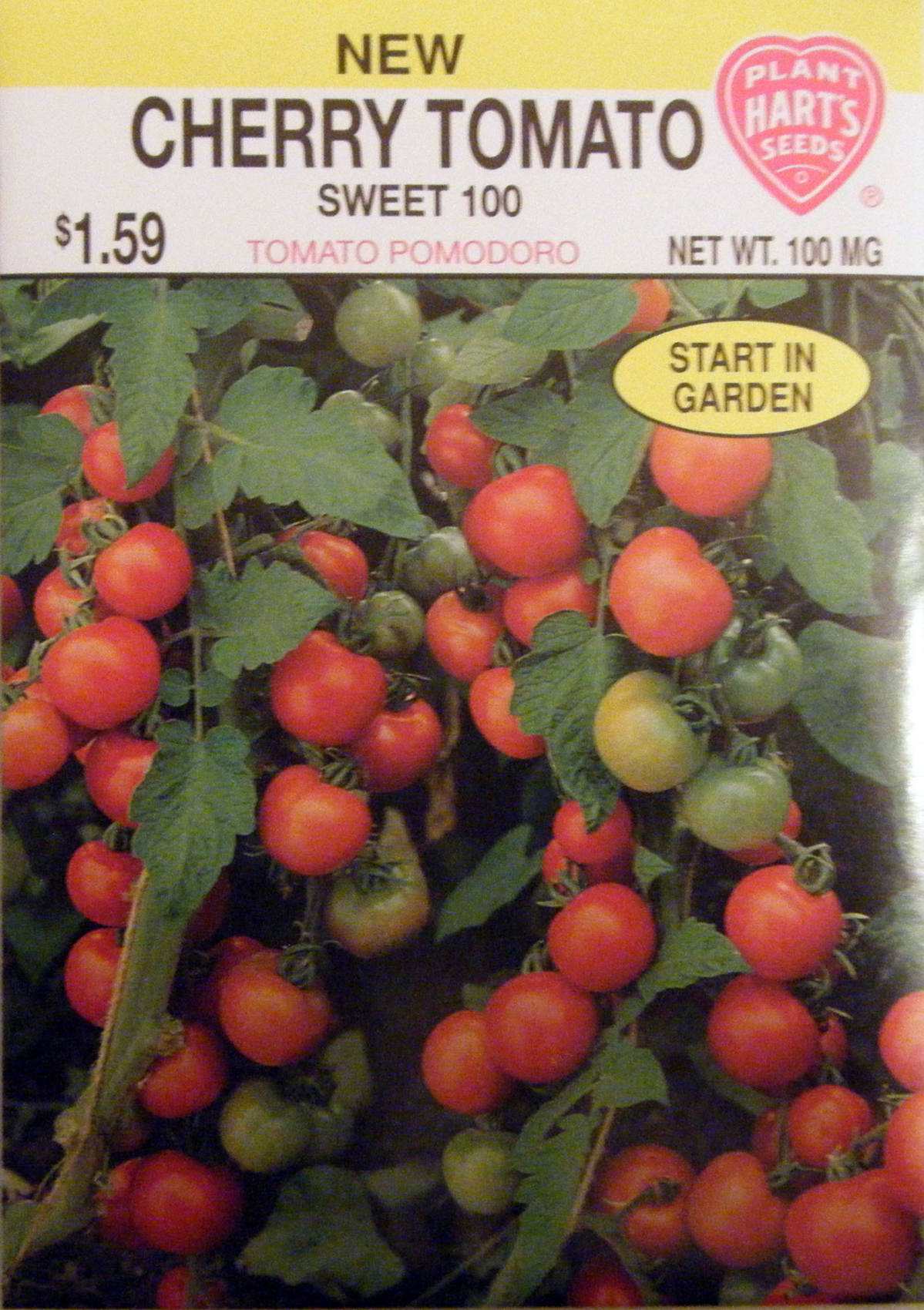 New Variety of Cherry Tomato Available