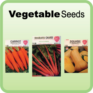 Buy Vegetable Seeds