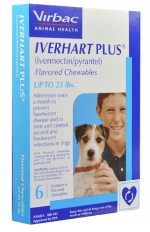Best Heartworm Prevention Medicine for Dogs (2020) | EntirelyPets