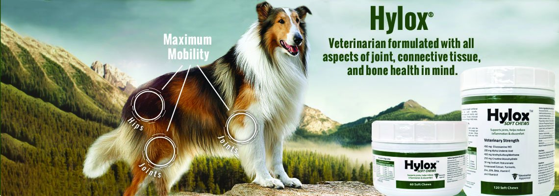 Pet Home & Travel Essentials