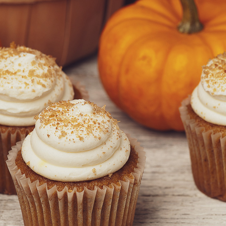 Pumpkin Carrot Pupcakes Dog Treat Recipe