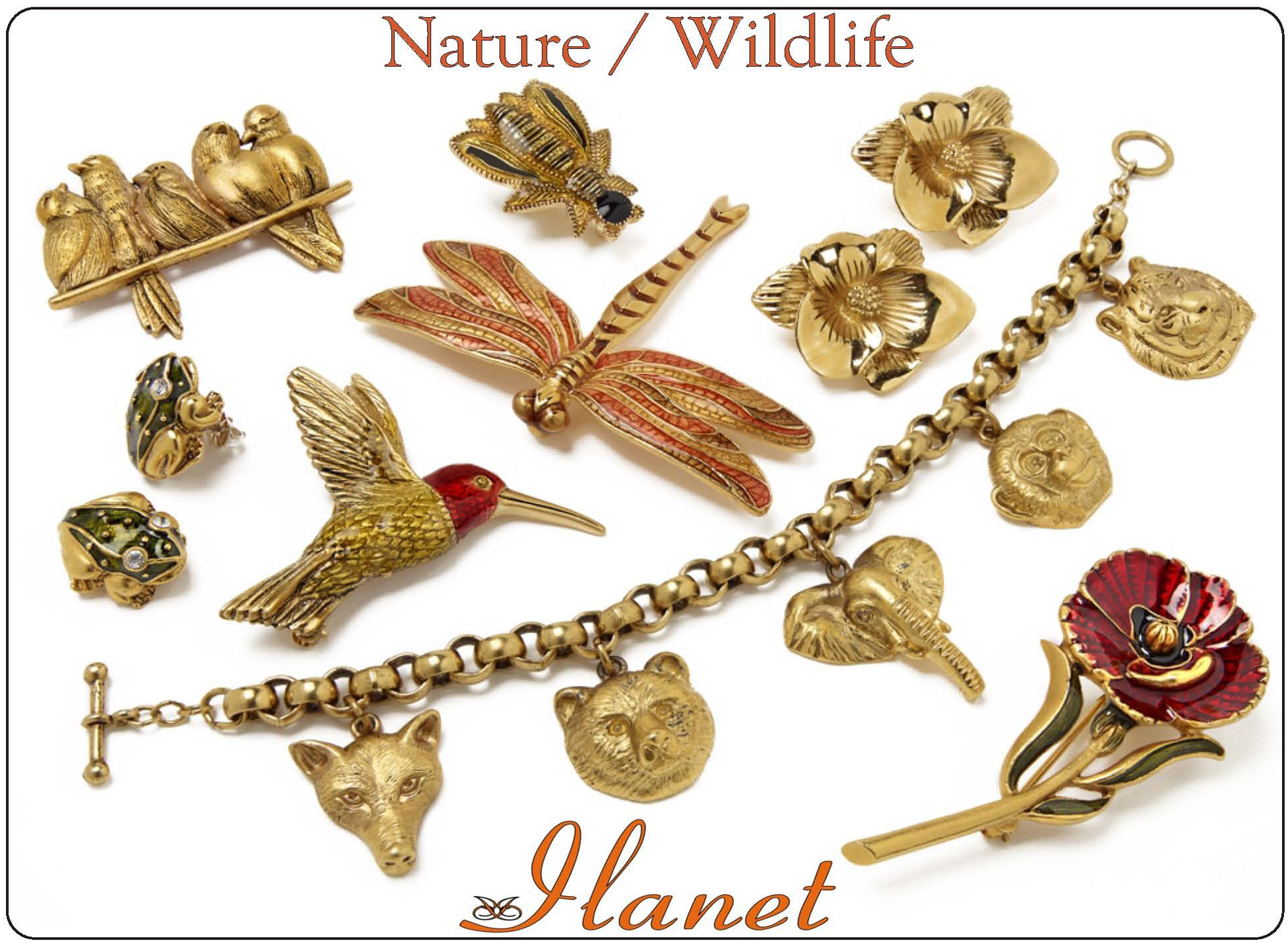 Nature and Wildlife Collection